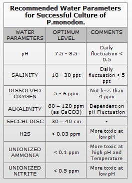 Water Quality Parameters For Fish Farming - Unique Fish Photo